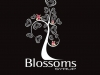 blossoms-syrup-logo-black-and-color-owls-2
