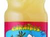 caraibos-litchee25