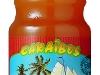 caraibos-papaya100