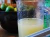 citruspresser-juice