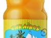 caraibos-mangue25