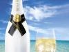 Moet champagne4