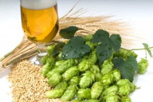 http://www.beersmith.com